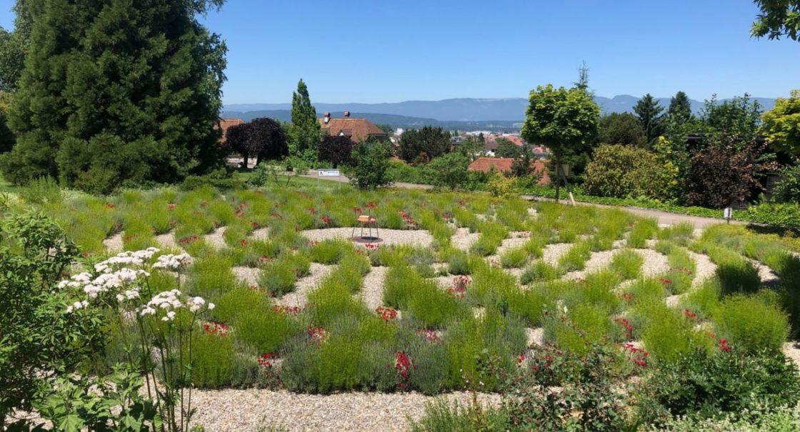 Labyrinth sm